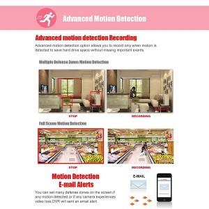 Floureon Überwachungskamera Bewegungserkennung